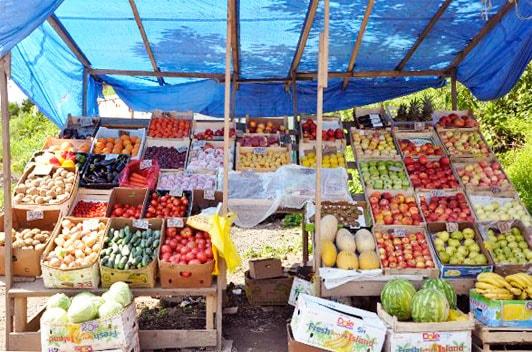 бизнес на фруктах и овощах