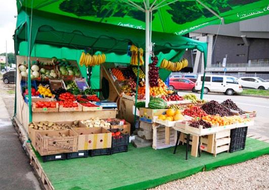 бизнес торговля фруктами и овощами