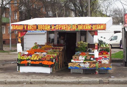 бизнес торговля овощами